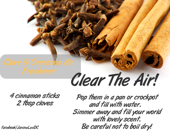 Commercial air fresheners are full of yucky chemicals.  Make your own!  #DIY  #healthy